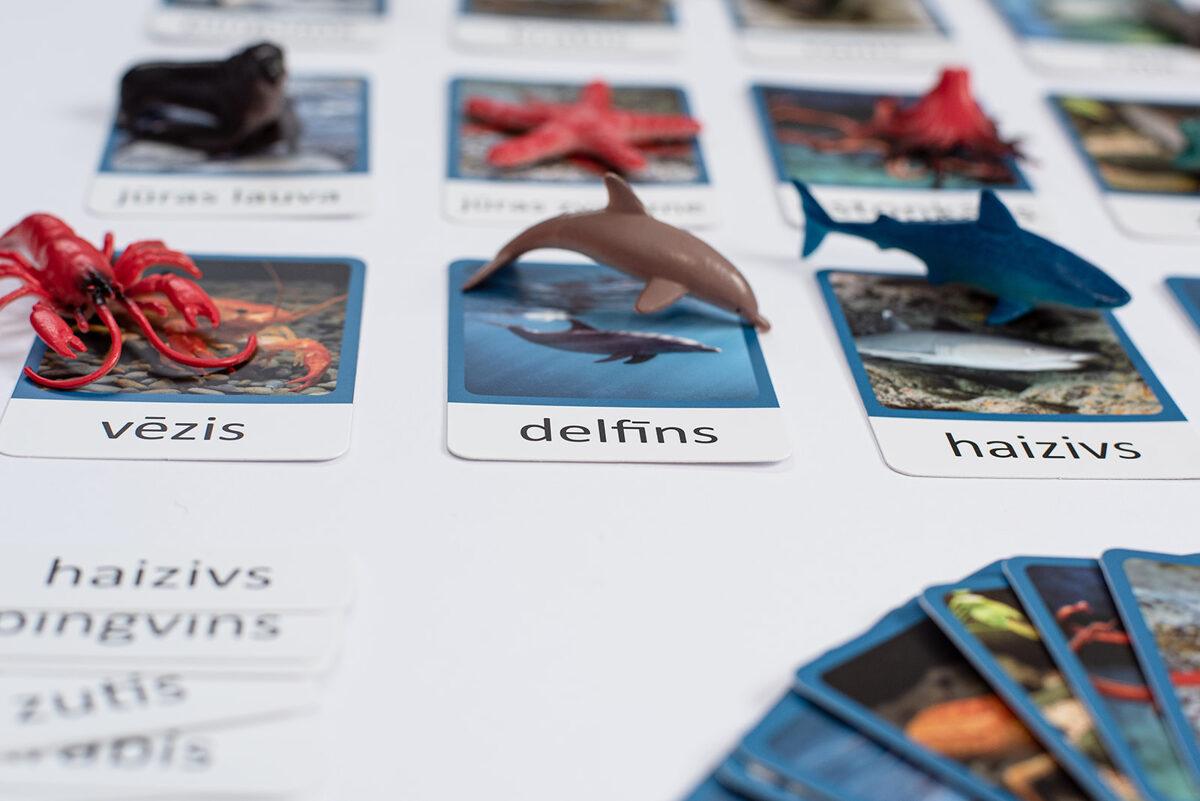 Dzīvnieku figūras un kartiņas
