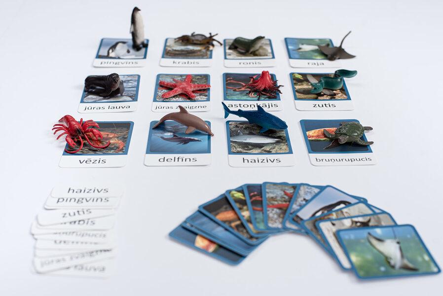 Dzīvnieku figūras, kartiņas un mazie drukātie burti